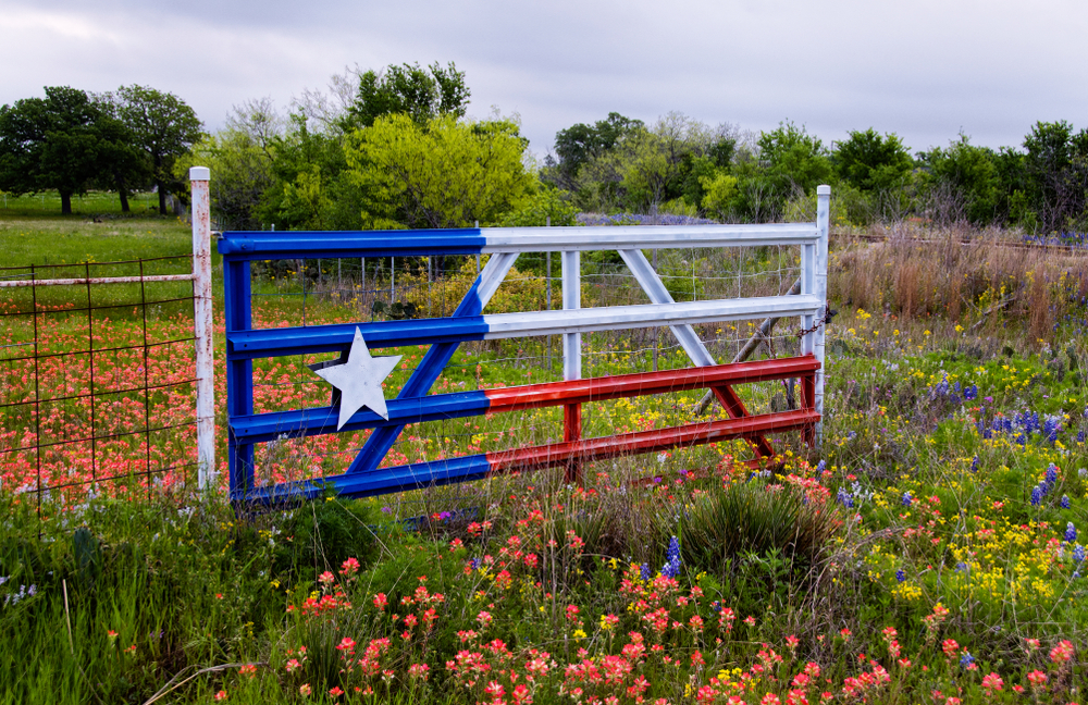 Texas Flag on gate